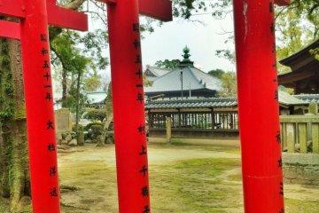 Nankobo through the torii gates