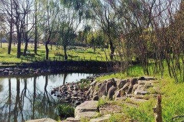 Спокойная прогулка по парку