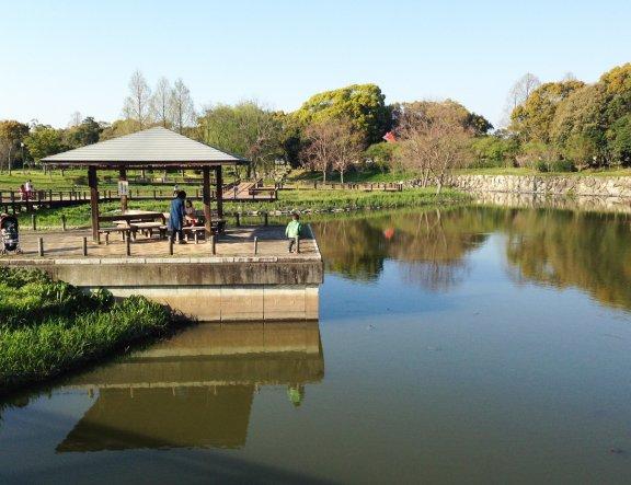 Công viên Shinrin