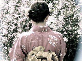京都、二条城の着物と桜、伝統的スタイル