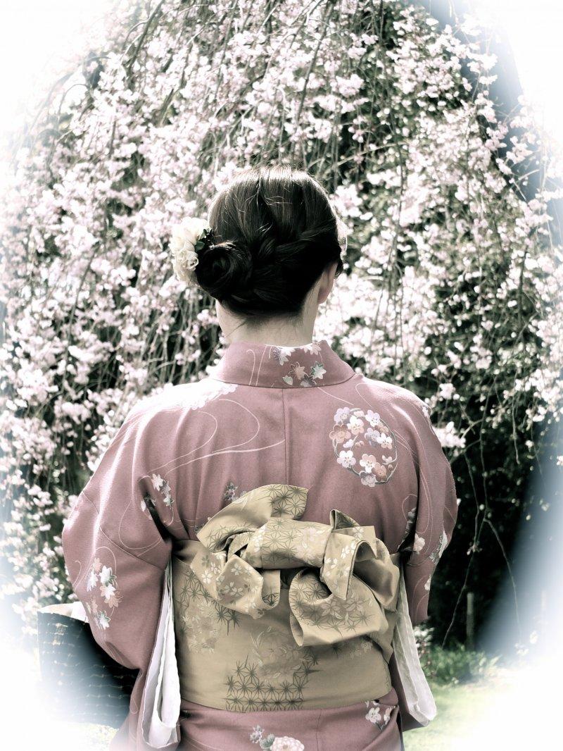 교토 니죠성에서 기모노와 사쿠라, 고전적인 스타일