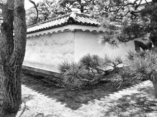 มุมหนึ่งของปราสาทนิโจะ เกียวโต