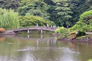 สะพานไม้โค้งในสวนญี่ปุ่นให้ความรู้สึกสงบร่มเย็นท่ามกลางแมกไม้