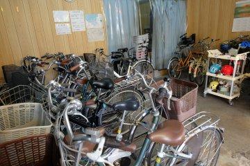 ปั่นจักรยานฝ่าฝูงกวางที่นารา