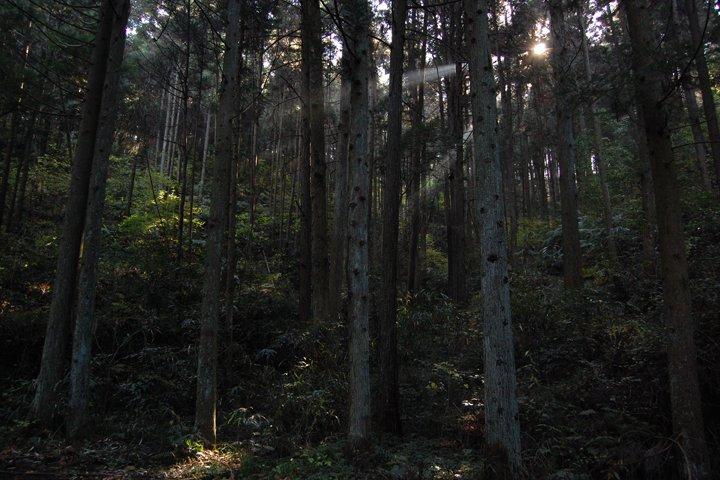Mount Kannan