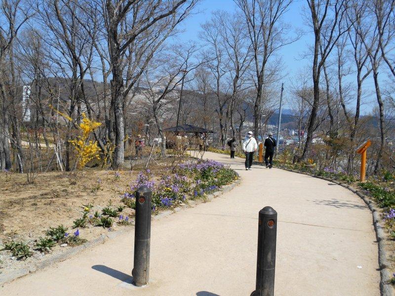 후나오카 성 공원이 있는 언덕 꼭대기까지 쉽게 걸어갈 수 있다