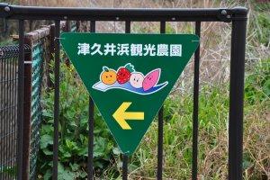 Tsuikuihama Direction