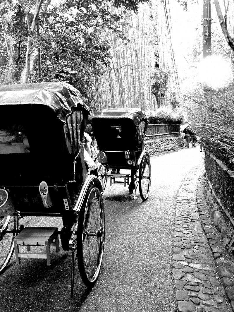 <p>Visitors enjoying a ride through the Sagano Bamboo Grove in rickshaws</p>