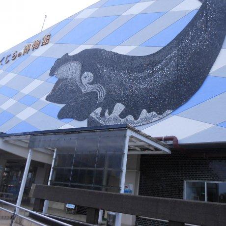 พิพิธภัณฑ์วาฬไทจิ
