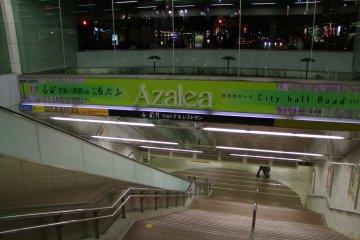 <p>Welcome to Azalea!</p>