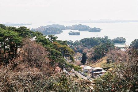 Vịnh Matsushima vào mùa xuân