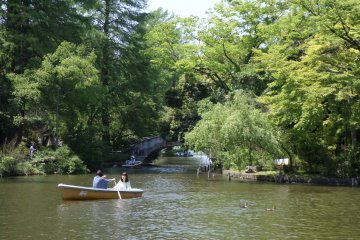 <p>Renting a boat is a popular activity at the park.</p>