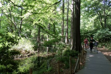 <p>The park is popular with runners and bikers alike.</p>