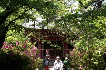 <p>The shrine is almost hidden by trees and flowers.</p>