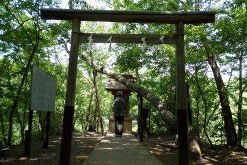 <p>A visitor prays at the shrine.</p>