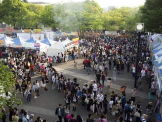 Massive crowd at the festival.