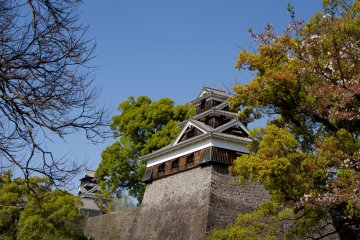 <p>The shrine grounds are spacious, and it is pure pleasure to discover new views of the castle keep and the turrets from different angles.</p>