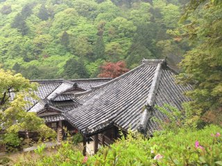 Yoshimine-dera is nestled in the pristine mountains about 30 mins from Higashi-Muko, which is often overlooked by people racing between Kyoto and Osaka.