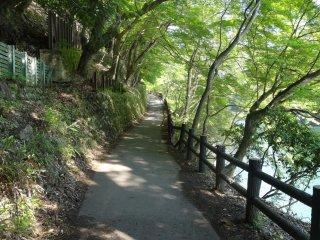 เส้นทางเลียบแม่น้ำโฮะซุ ( Hozu) ที่งดงาม