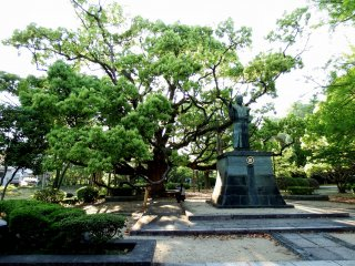 Impressive big tree and statue of Hachisuka Iemasa, the first lord of Tokushima