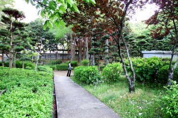 <p>Various kinds of trees are planted inside the park and walking paths wind through them</p>