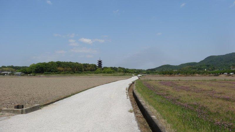 <p>Cycle the Kibi Plain</p>