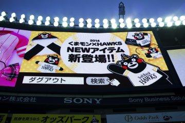 <p>SoftBank Hawks!</p>