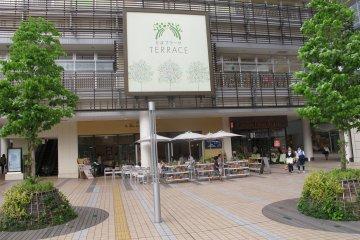 <p>The terrace</p>