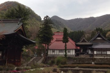 <p>Ganshoin, viewed from outside the gate.</p>