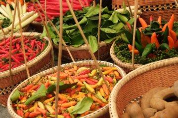 งานเทศกาลไทยในสวนโยโยงิ