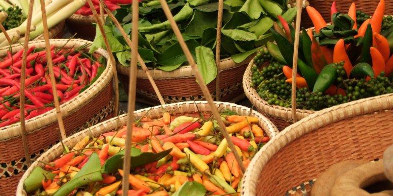 Thai Food Festival Yoyogi