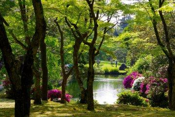 Ботанический сад Манъё