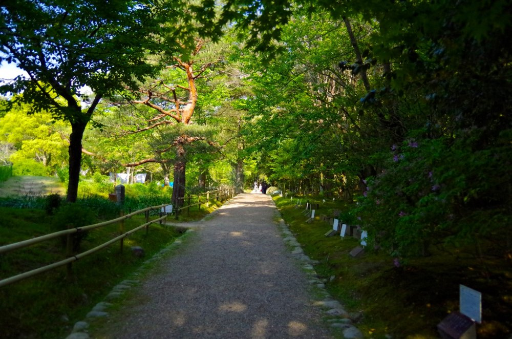 Manyo Botanical Garden - 奈良 - Japan Travel - 日本旅遊大搜索