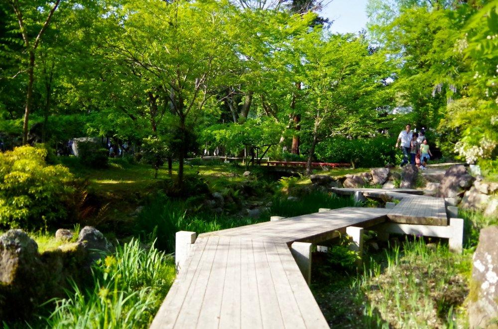 Manyo Botanical Garden - 奈良 - Japan Travel - 日本旅游大搜索