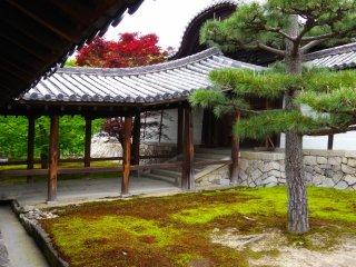 東福寺の外回廊