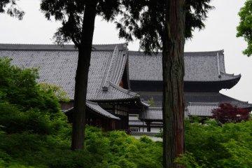 <p>Main Hall and San-mon Gate</p>