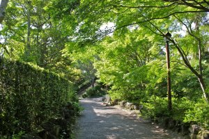 The beautifully manicured paths leading up to Tateyama Castle.