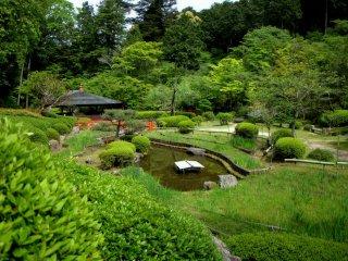 높은 곳에서 보이는 정원