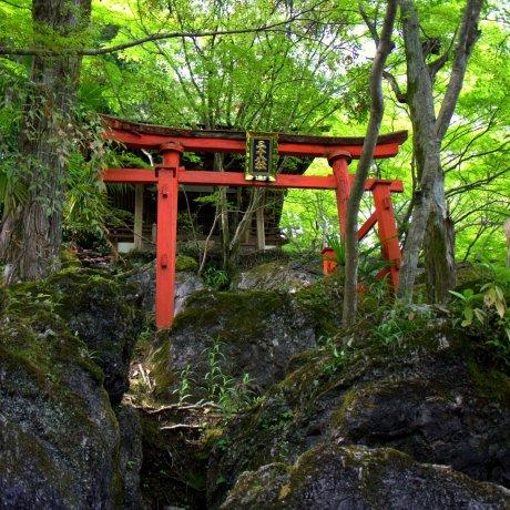 Ishiyama Temple in Otsu