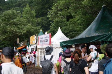 <p>Lots of great food options dotted around the festival site</p>