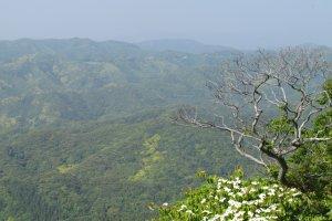 Hills of Chiba's Boro Penninsula