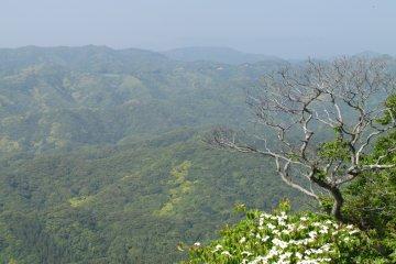 <p>Hills of Chiba&#39;s Boro Penninsula</p>