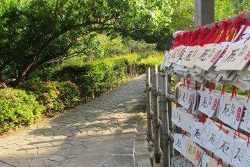 <p>Temple prayers hanging in front of&nbsp;Nihon-ji Temple</p>