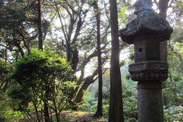 <p>The atmosphere of Nokogiriyama</p>
