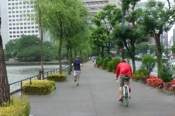 <p>Joggers and cyclists sharing the path &nbsp;</p>