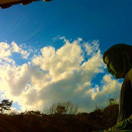 神奈川の鎌倉大仏