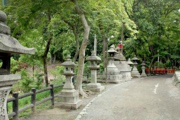 <p>The gardens</p>
