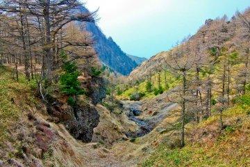 """Одна из прекрасных долин вдоль маршрута из """"Курумадзака-тогэ"""" до """"Томи-но-касира"""""""