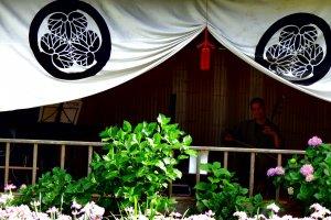 花菖蒲園内のステージでは二胡の演奏が行われ、来場者たちは心地良い音楽と美しい花を堪能していた