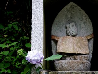 Small Jizo statue and hydrangea I found on the way to Daian-zenji Temple